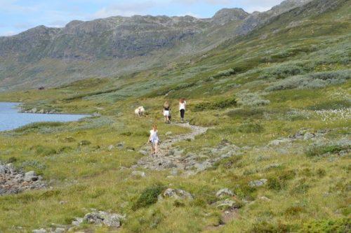 Hut huren noorwegen 3 Wim Boussier