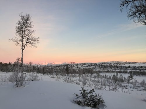 ons verhaal eerste foto winter