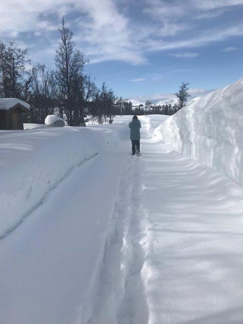wandeling in de sneeuw